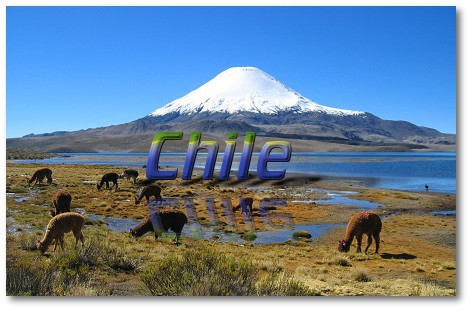 Chile (Wikipedie info)