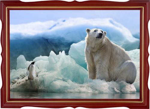 Tučňák a medvěd lední